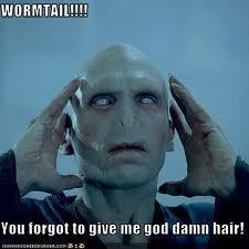 Wormtail forgot the hair!