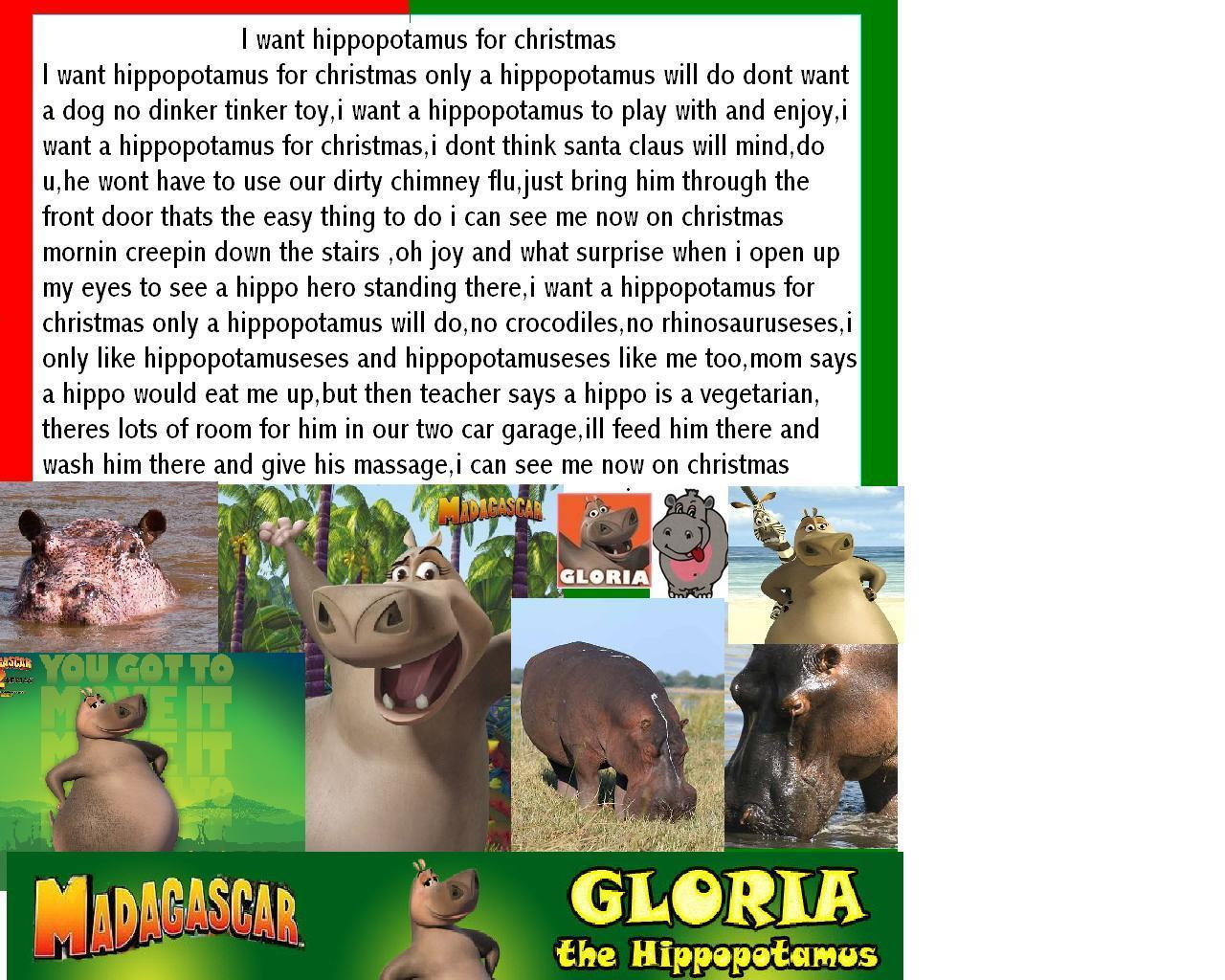 Hippos images all hippos all the time(even on christmas) HD ...