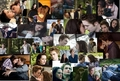 bella and edward collage - twilight-series photo