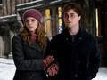 harry y hermione - harry-and-hermione photo