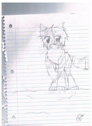 Make Your Own Warrior Cat! hình nền probably with a sign entitled i like this one. :) someone still made me draw it