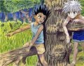 killua n gon - hunter-x-hunter photo