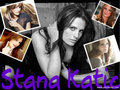 stana-katic - the extraordianry Stana wallpaper