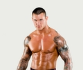 the viper - randy-orton photo