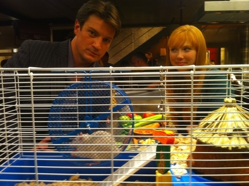 """""""Nathan and Molly with their furry co-host who was keeping in shape between takes."""""""