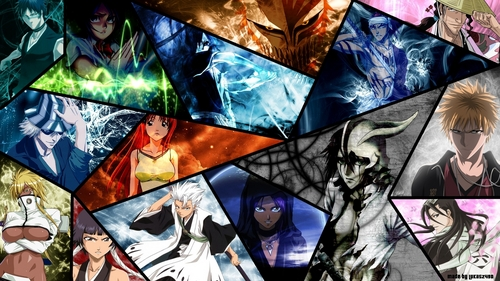 anime bleach wallpaper probably containing anime called Bleach Characters