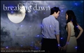 Breaking Dawn (Amanecer) - twilight-series photo