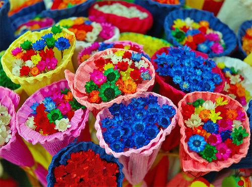 Bright colored world