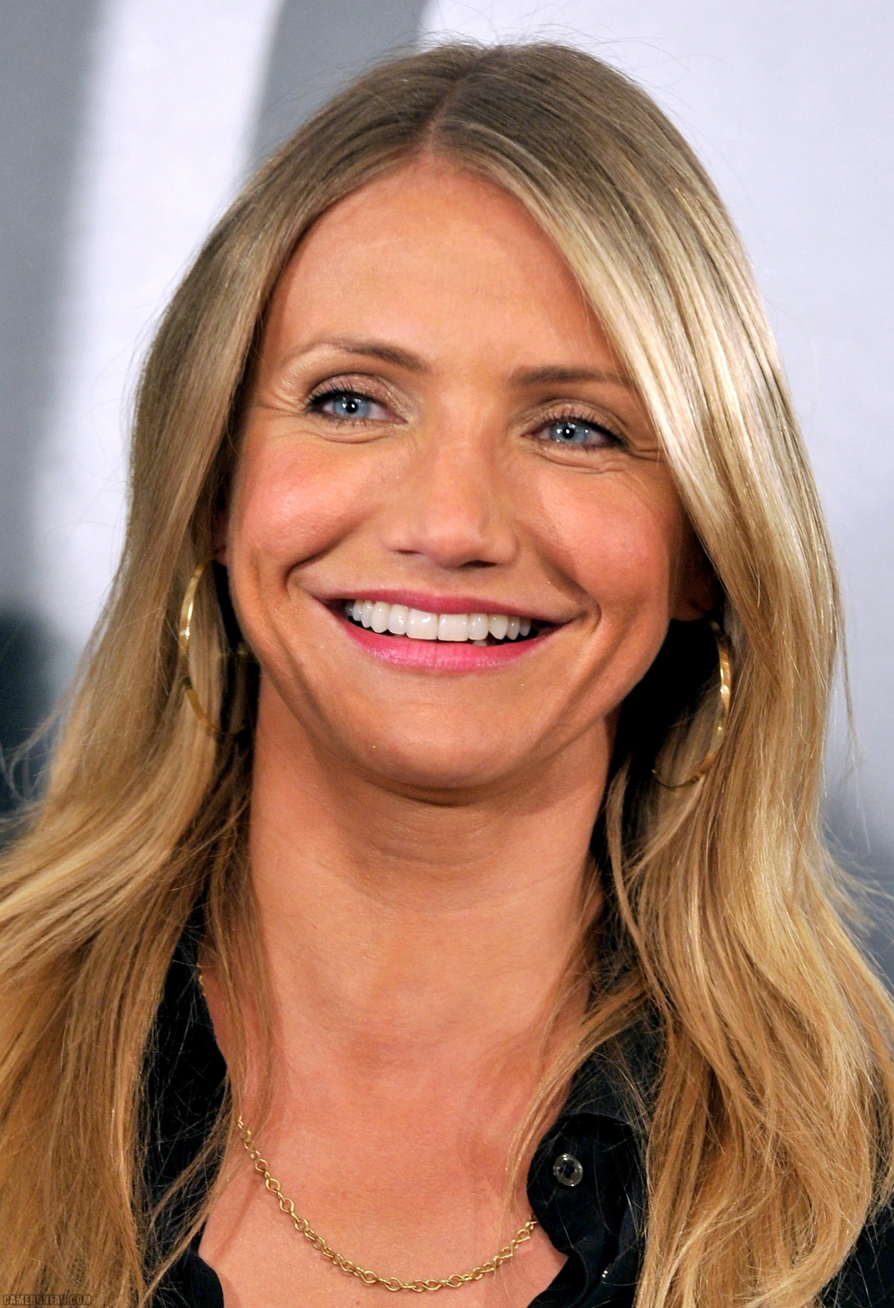 Cameron The Green Hornet Photocall In Madrid Cameron Diaz Photo 17405144 Fanpop