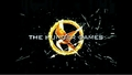 Cool Hunger Games Logo