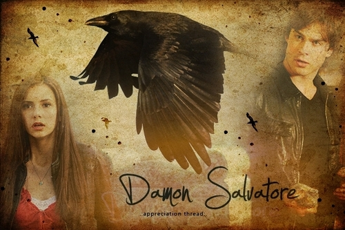 Damon and Elena 壁纸