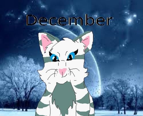 December ícone