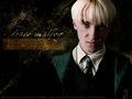 Draco Malfoy - draco-malfoy wallpaper