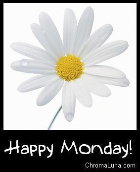 Happy Monday Susie <3