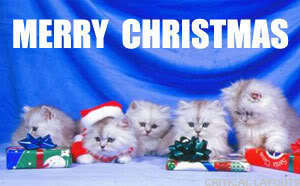 Merry krisimasi