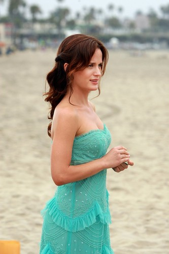 Elizabeth Reaser wallpaper possibly containing a bridesmaid, a strapless, and a dinner dress entitled New/HQ 'The Ex List' Stills.