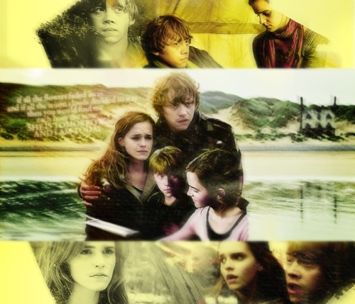 Ron and Hermione - Fan Arts