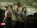Shane, Rick & Lori - the-walking-dead wallpaper