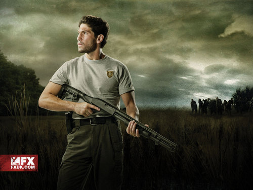 The Walking Dead kertas dinding with a rifleman titled Shane Walsh