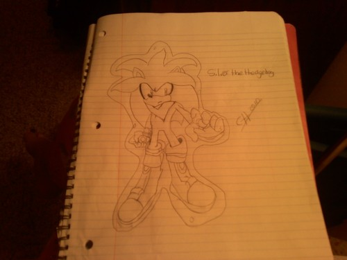 Silver the Hedgehog...not as good as I thought so..yeah.