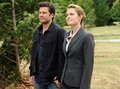 Some Dual Spires stills:) - psych photo
