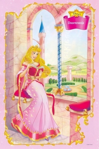 The Lovely Princess Aurora