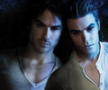 Vampire Brothers For Ever