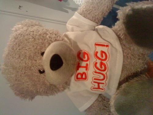 my sweet stuffed oso, oso de