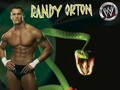 randy orton the viper - randy-orton wallpaper