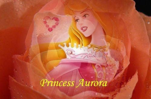 ♥Princess Aurora♥