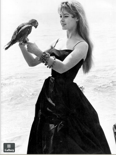 Brigitte Bardot karatasi la kupamba ukuta probably containing a conch called BB- very young