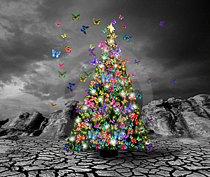 Butterfly Christmas Tree - Bright Colors Photo (17593611 ...