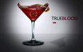 Eric. lmao! - true-blood wallpaper