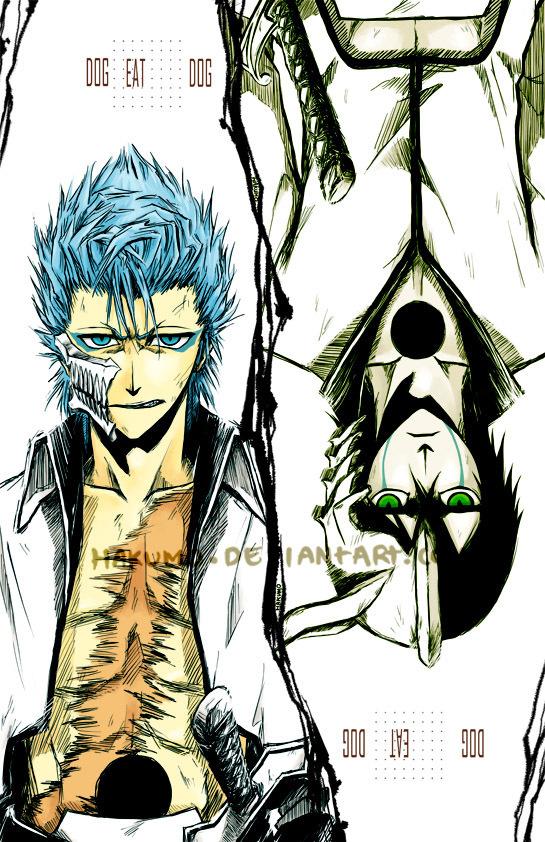 Bleach Anime Grimmjow and UlquiorraUlquiorra Vs Grimmjow
