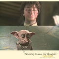 Harry & Dobby - harry-potter fan art