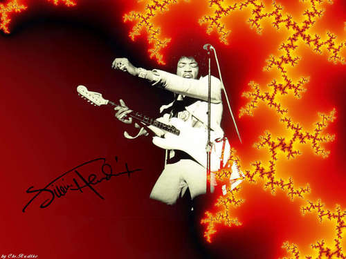 Classic Rock wallpaper containing a japanese apricot entitled Jimi Hendrix