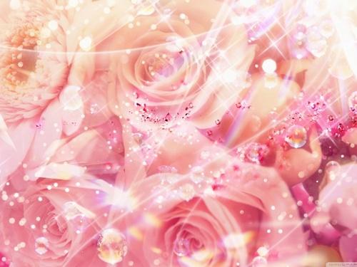 Magic Розы