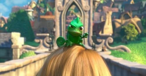 Pascal <3