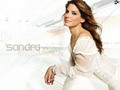 sandra-bullock - SB wallpaper