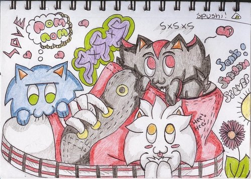 Sonic, Shadow and Silver's shoe Amore XD