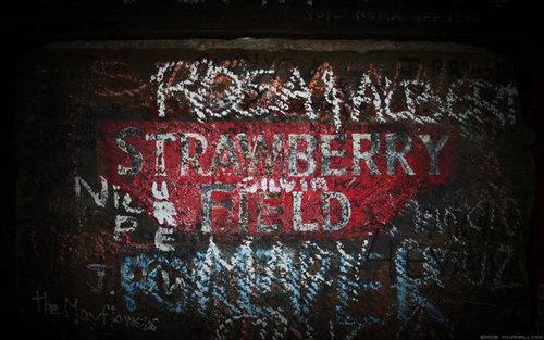 strawberi Field