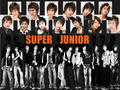 Super Junior kertas dinding