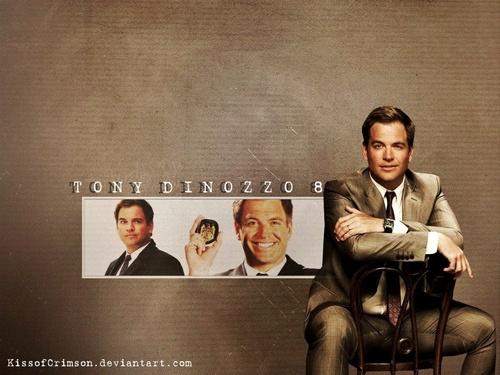 Tony DiNozzo S8