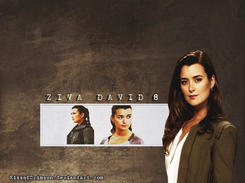 Ziva David S8