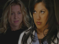 greys-anatomy - callie wallpaper