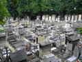 dalida's grave