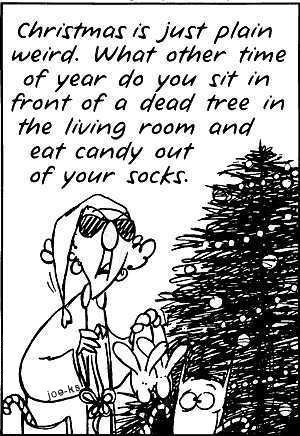 Natale is... weird!