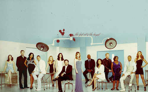 Grey's Anatomy kertas dinding entitled Grey's Season 7 Cast