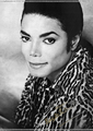 HD quality. - michael-jackson photo