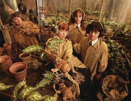 Herbology Class :))